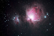 Nebula Photos - The Orion And The Running Man Nebulae by Pat Gaines