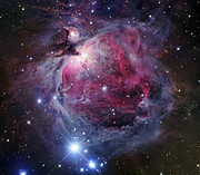 H Ii Regions Prints - The Orion Nebula Print by Robert Gendler