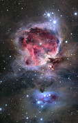 H Ii Regions Prints - The Orion Nebula Print by Roth Ritter