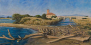 Marco Busoni Art - The outfall of Ombrone river by Marco Busoni