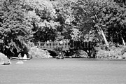 Bow Bridge Prints - THE OVERHANG in BLACK AND WHITE Print by Rob Hans