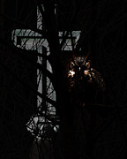 Spooky Scene Posters - The Owl and The Cross Poster by Wingsdomain Art and Photography