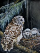 Birds Of Prey Paintings - The Owls Nest by Nonie Wideman