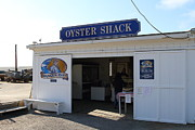 Tomales Bay Prints - The Oyster Shack at Drakes Bay Oyster Company in Point Reyes California . 7D9832 Print by Wingsdomain Art and Photography