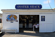 Point Reyes National Seashore Acrylic Prints - The Oyster Shack at Drakes Bay Oyster Company in Point Reyes California . 7D9835 Acrylic Print by Wingsdomain Art and Photography