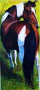 Abstract Horse Paintings - The Paint by Frances Marino
