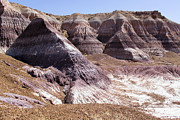 Petrified Forest Framed Prints - The Painted Desert Framed Print by Adam Jewell