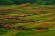 The Palouse Print by Reflective Moments  Photography and Digital Art Images