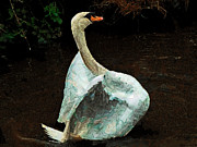 Paper Mache Framed Prints - The Papier-Mache Swan Framed Print by Steve Taylor