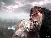 Lions Digital Art Posters - The Passion Poster by Bill Stephens