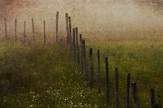 Pasture Digital Art Posters - The Pasture Fence Poster by Ron Jones