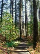 Flora Digital Art Originals - The Path by Holly Ethan