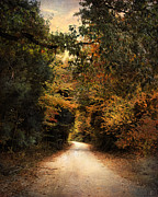 Autumn Landscape Prints - The Path Less Traveled Print by Jai Johnson