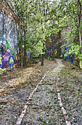 Blue Mushrooms Photo Posters - The Path of Graffiti Poster by Jason Politte