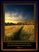 Inspirational Poster Framed Prints - The Path Framed Print by Phil Koch