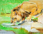 Wildlife Painting Prints - The Paws that Refreshes Print by Judy Kay