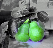 Pears Digital Art Framed Prints - The Pears Framed Print by Donna Bentley