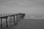 Stephen White Metal Prints - The Pier Metal Print by Stephen White