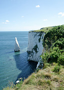 England Landscape Prints - THE PINNACLE stack of white chalk from the cliffs of the Isle of Purbeck Dorset England UK Print by Andy Smy