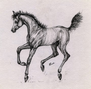 Horse Drawing Originals - The Playful Foal by Angel  Tarantella