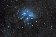 Star Clusters Posters - The Pleiades, Also Known As The Seven Poster by John Davis