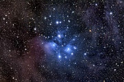 Star Clusters Posters - The Pleiades, Also Known As The Seven Poster by Roth Ritter