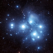 Star Clusters Posters - The Pleiades Star Cluster Poster by Charles Shahar