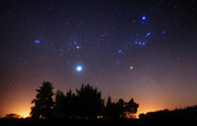 Star Clusters Posters - The Pleiades, Taurus And Orion Poster by Luis Argerich