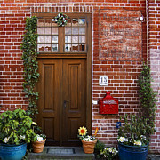 Flowerpots Posters - The plumbers home Poster by RicardMN Photography