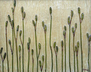 Pods Mixed Media Framed Prints - The Pods of Summer Framed Print by Maureen Ida Farley
