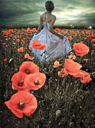 Poppies Field Digital Art - The Poppy Field  by Eugene James