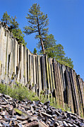 Devils Postpile Photos - The Postpile by Kelley King
