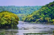 Harpers Ferry Prints - The Potomac Print by Bill Cannon