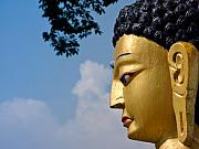 Siddharta Metal Prints - The profile of Buddha Metal Print by Nila Newsom
