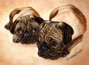 Pugs Framed Prints - The Pugs Framed Print by Ellen Strope