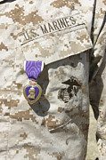 The Purple Heart Award Hangs Print by Stocktrek Images