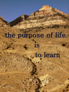 Advise Prints - The Purpose Of Life Print by Irma BACKELANT GALLERIES