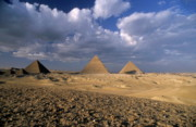 Old Ruins Posters - The Pyramids at Giza Poster by Sami Sarkis