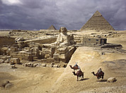 Camels Prints - The Pyramids Of Giza And The Great Print by B. Anthony Stewart