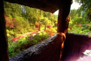Vancouver Island Originals - The Quarry View From Fairy Cottage by Lawrence Christopher