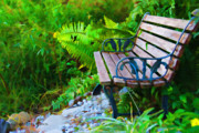 Park Benches Framed Prints - The Quiet Spot Framed Print by Kenny Francis