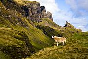 Skye Photos - The Quiraing Isle of Skye by John McKinlay