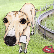 Greyhound Digital Art - The Racer by Stephanie Gerace
