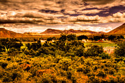 Old West Photos - The Ranch at the Red Rock Conservation Area by David Patterson