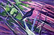 Southwest Images And Landscapes - The Raven by Betty Pieper