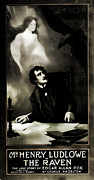 Ghost Story Metal Prints - The Raven The Love Story Of Edgar Allen Poe Metal Print by Marcie Adams Eastmans Studio Photography