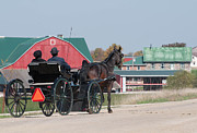 Amish Community Photo Prints - The Red Barn Print by Lisa  DiFruscio