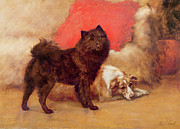 Dog Paintings - The Red Cushion by Maud Earl
