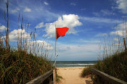 Path To The Beach Photo Prints - The Red Flag Print by Susanne Van Hulst