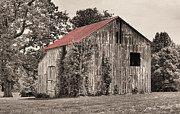 Country Scenes Prints - The Red Roof Print by JC Findley